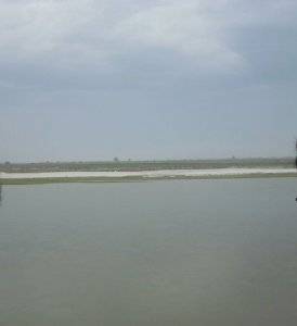 River Ganga (Ganges) at Narora India