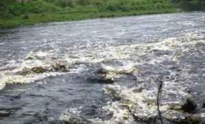yourstory-kali-river-3